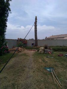 abattage d'un arbre proche d'une habitation volvestre